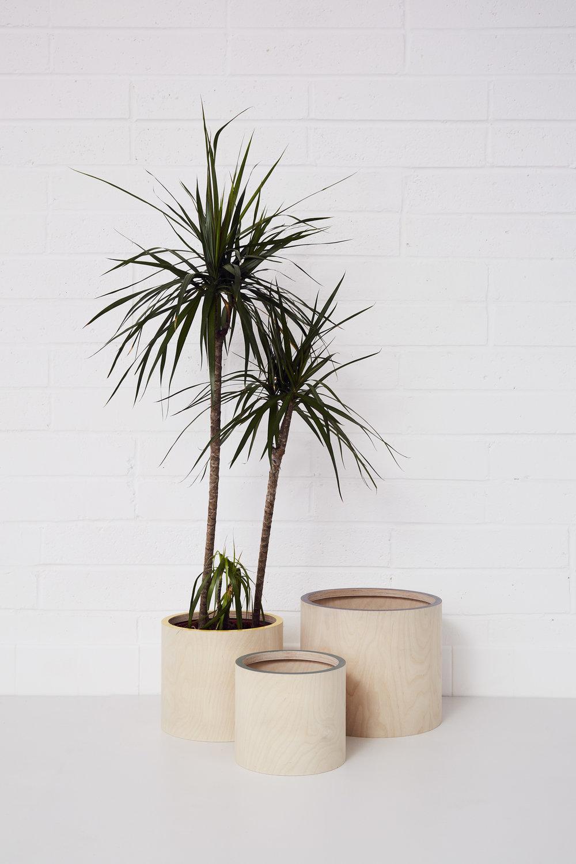 Plant pot covers (£24, £30, £42)