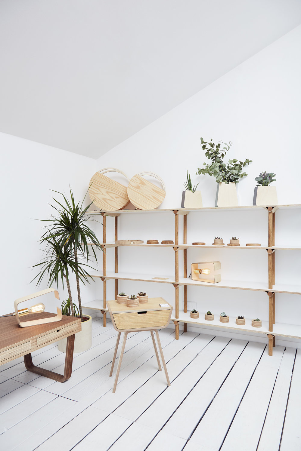 New shelving, Sunset lamp, Fab Lamp, Trays, Small planters, Wall and Table Erlen planters, Coffee table, bedside table.