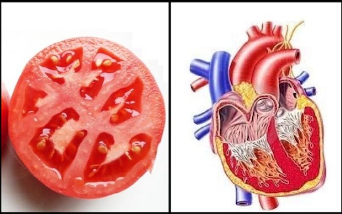 human-heart-tomato-1-500x313-700x.png