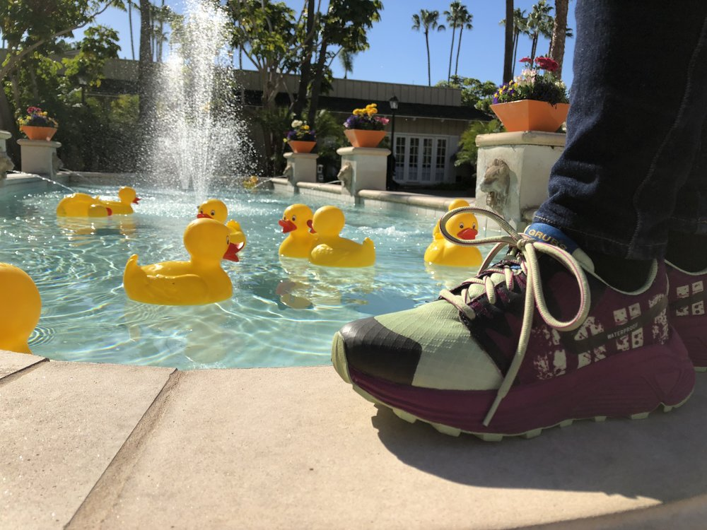 """Who let the ducks out!"" Californian relaxed cheeky style."