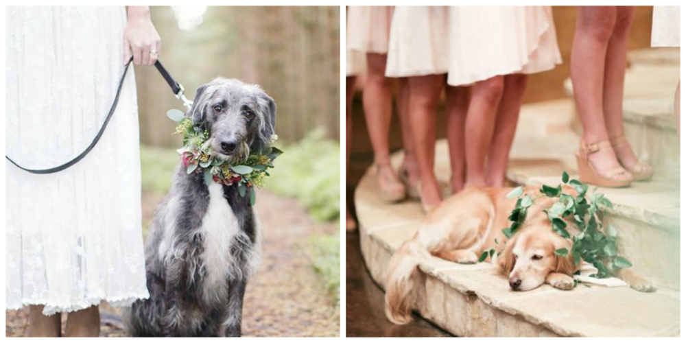 Left: Rachel Rose Photography on Want That Wedding | Right: via Your Perfect Wedding Photographer