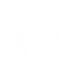 Newmanity Circle (300px).png