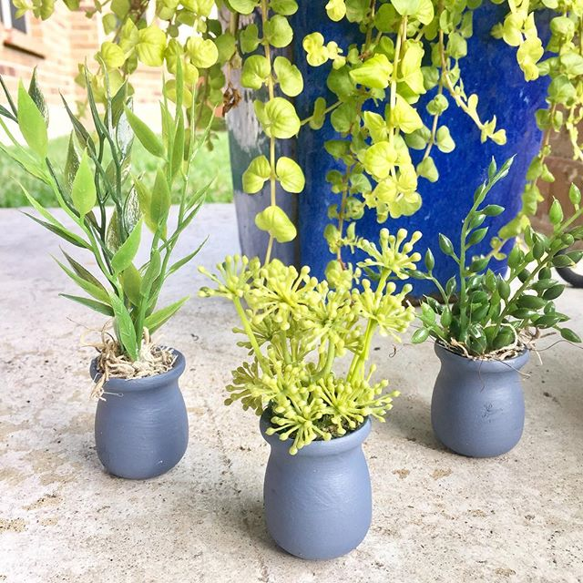 🌿🌱making mini plants today.  You can never have too many plants in your home 🏡 whatever the scale! 🌿🌱#dollhouse #dollhousemakeover #dollhousereno #miniac #plants #miniplants #miniature #miniaccessories #interiordesign #designwithplants