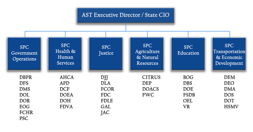 AST Strategic Planning Coordinators - roles and agencies served.