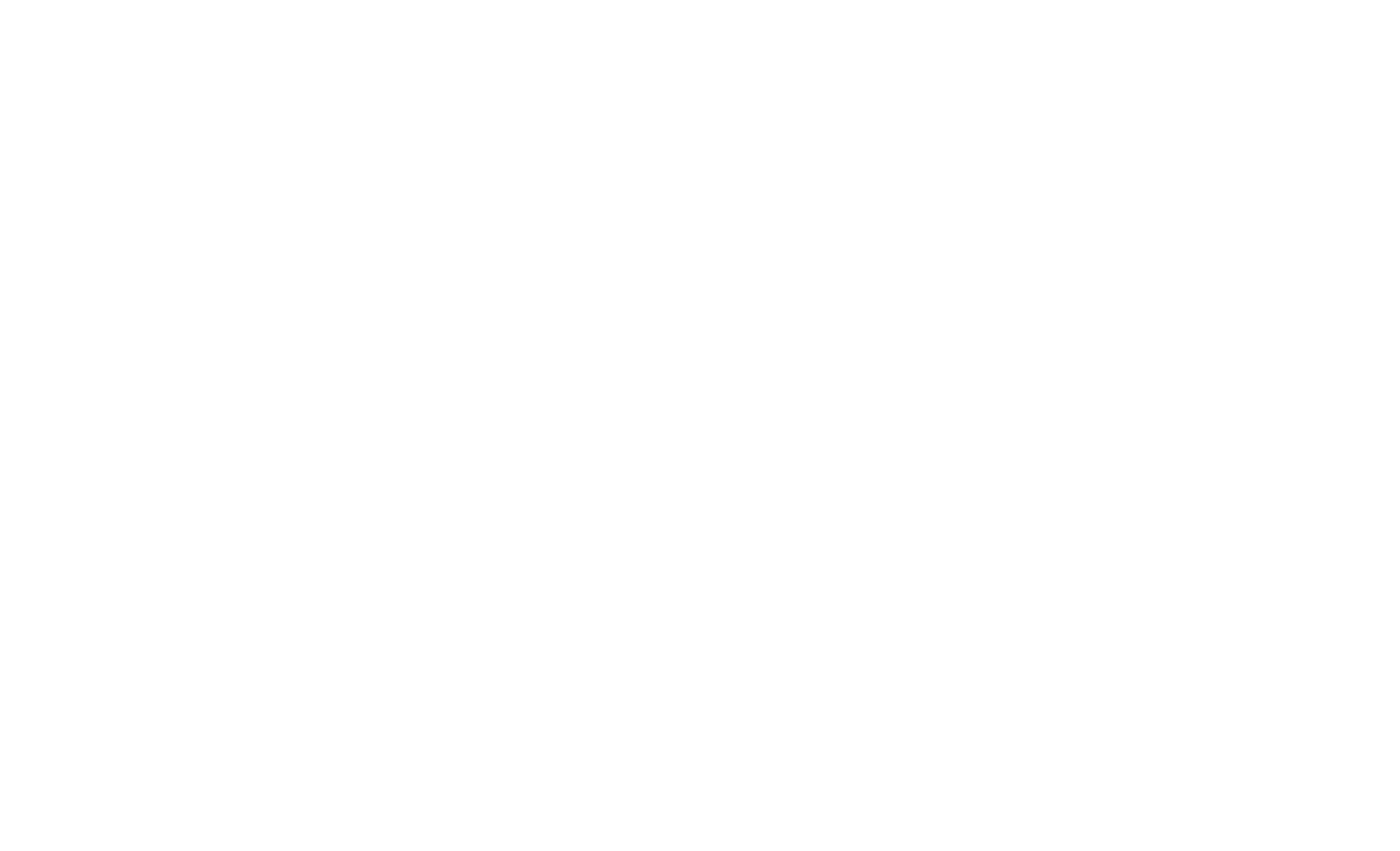 Dizzy Birds Rotisserie | Elevated Comfort Food | Biddeford, ME