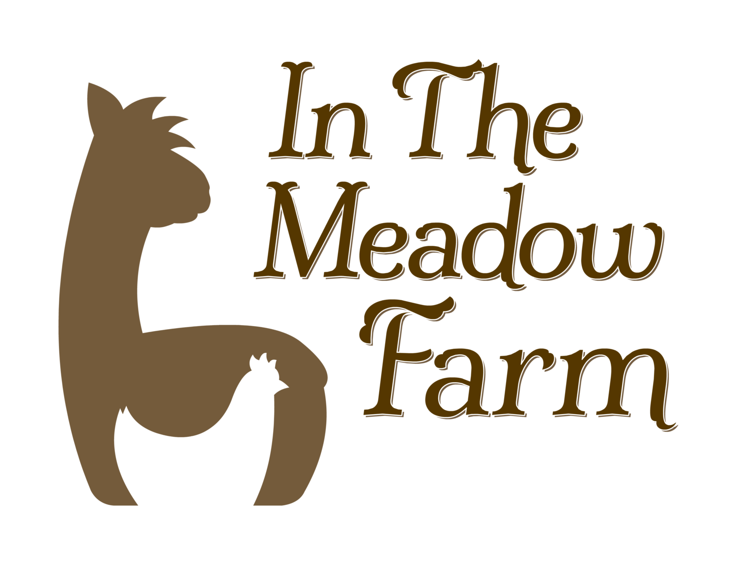 In The Meadow Farm Alpacas