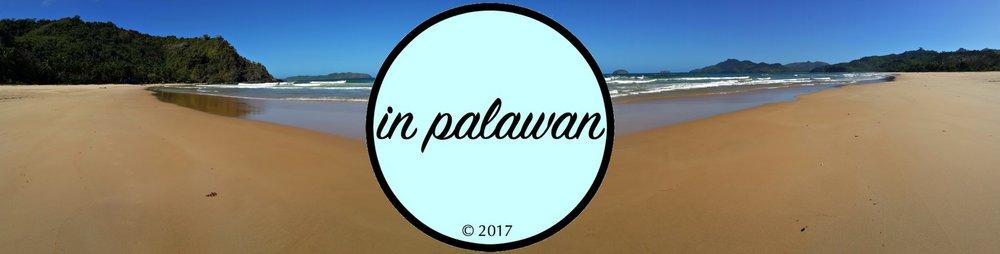 palawan beachfront property