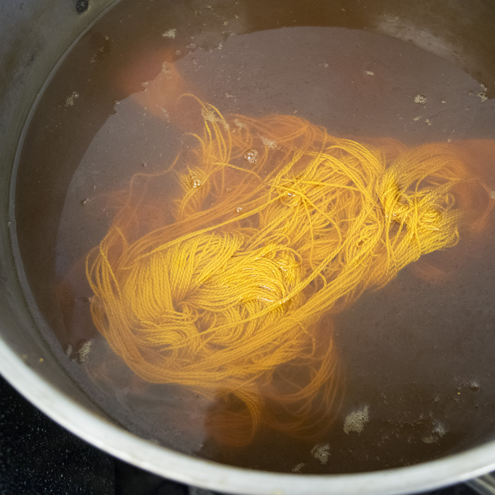 Osage Orange Dye Bath