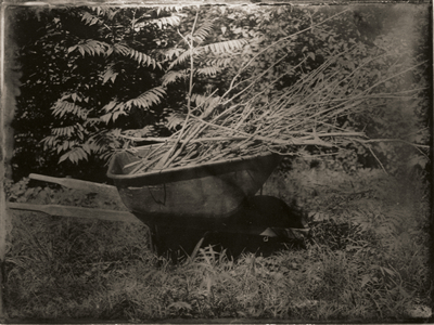 Dan Peyton, Wheelbarrow, ambrotype, 30 x 40 cm, 2011
