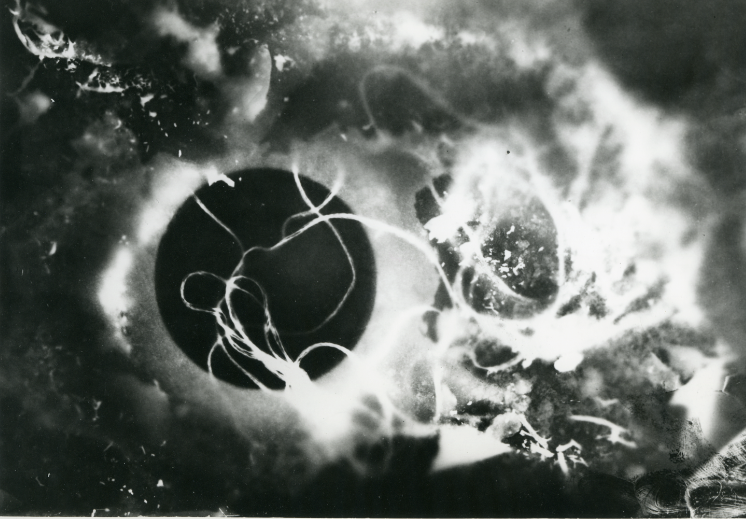 Stefan Themerson, photogram, 1929/30