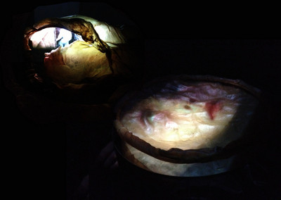 Detail from sculptural video installation Generation, by Rosalyn Driscoll and Tereza Stehlíková, 2012