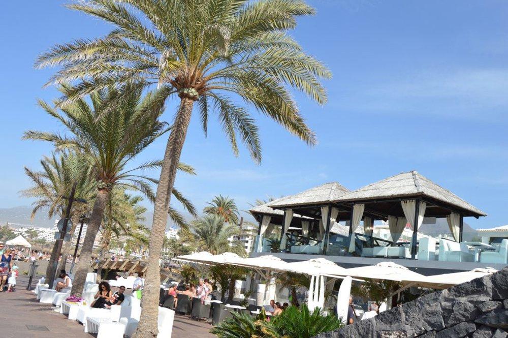 Papagayo-Beach-Club-1024x681.jpg