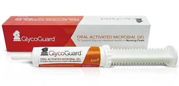 GlycoGuard_Single _2048x2048.jpg