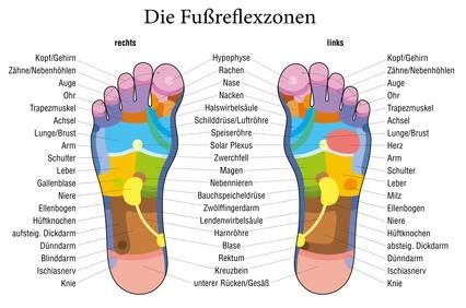 """Am Fuß - Die Fußreflexzonen-Therapie geht ursprünglich auf eine jahrtausende alte indianische Massagebehandlung zurück. Anfang des 20. Jahrhunderts wurde die Methode von dem amerikanischen Arzt William Fitzgerald (1872-1942) erforscht und systematisiert. Auf Basis seiner Veröffentlichungen wurde die Fußreflexzonen-Therapie in den letzten Jahrzehnten von Hanne Marquardt zu einer differenzierten Therapieform weiterentwickelt.Der Therapie zugrunde liegt die Erkenntnis, dass die seitliche Fußansicht eines Menschen seiner sitzenden Silhouette gleicht (der große Zeh als Kopf, der Ballen als Krümmung der Wirbelsäule u.s.w.). Dabei entspricht der rechte Fuß der rechten Körperhälfte, der linke Fuß der linken. Die dort befindlichen Organe haben ihre Entsprechung in der jeweiligen Reflexzone des Fußes, paarige Organe (z.B. die Nieren) """"bilden"""" sich auf beiden Füßen ab.Es werden die Reflexzonen in einer festgelegten Reihenfolge geknetet und gedrückt. Verhärtungen an diesen Stellen, Druckschmerzhaftigkeit, die Beschaffenheit der Haut und Nägel, Fußform und Fußgewölbe sowie vegetative Reaktionen (dazu zählt z.B. vermehrtes Schwitzen während der Behandlung), Atem- und Pulsfrequenz finden Beachtung. Die Behandlung dauert ca. 30-45 Minuten, in der Regel wöchentlich als Serie mit ca. 6-12 Sitzungen.Im Anschluss an die Behandlung kommt es häufig zu einer allgemeinen Verbesserung der Symptomatik und der psychischen Verfassung sowie zu einer Anregung aller Ausscheidungsprozesse (Urin, Stuhl, Schweiß). Damit """"beantwortet"""" der Körper die empfangenen Heilreize.Nach einer Behandlung empfehle ich zusätzliche Maßnahmen um den gesamten Körper zu vitalisieren. Eine ausreichende Trinkmenge ist wichtig um die gelösten Schlacken auszuspülen, basische Fußbäder sind sinnvoll und eine wirklich tolle Möglichkeit um auch im Schlaf den Körper weiter zu entlasten sind Fußpads. Diese enthalten Baumessig und führen zu einem erhöhten Stoffwechsel im gesamten Körper, leiten Säuren und Gifte über die Fußsohle"""