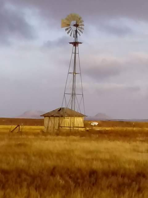 clayton windmill edward.jpg