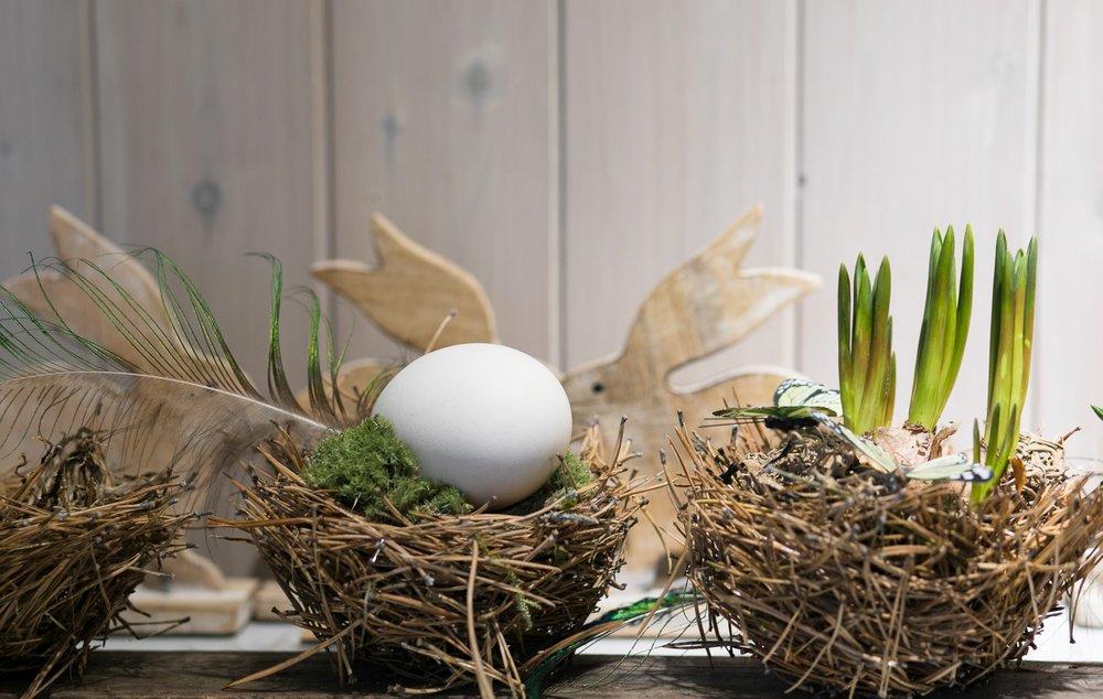 Nest_mit_Hase und Ei.jpg