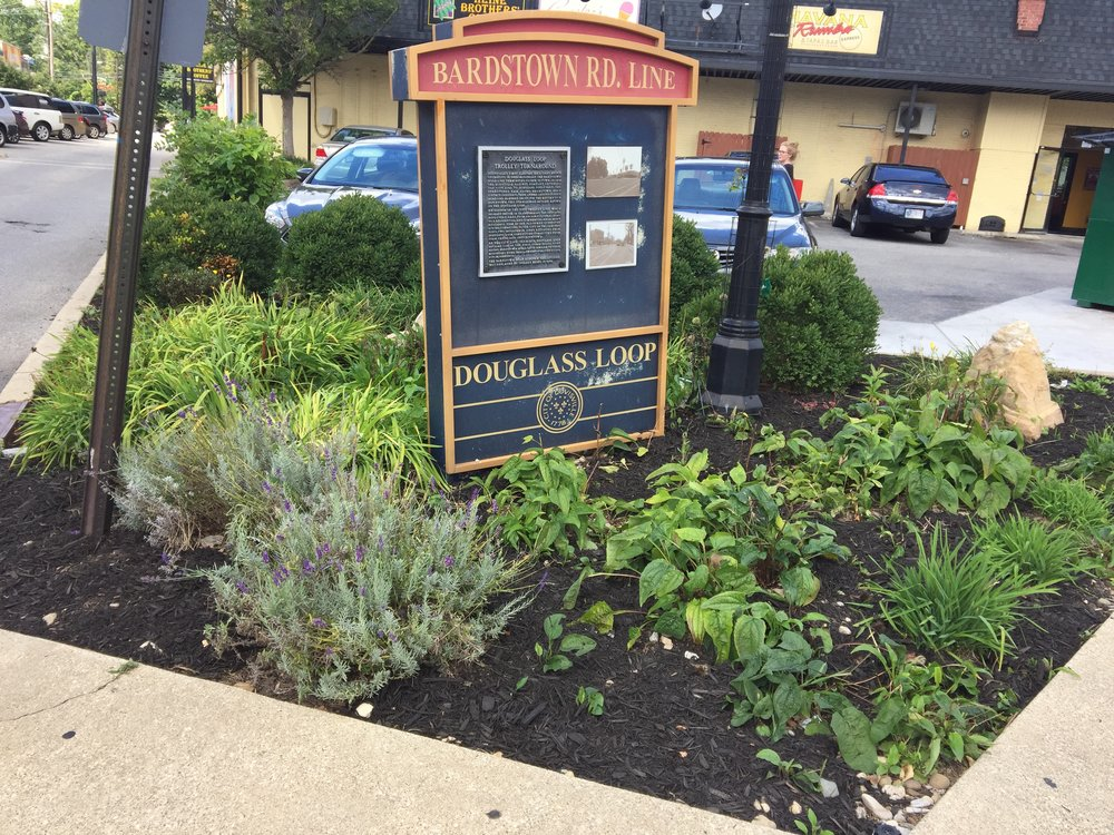 Loop Garden - Behind Havana Rumba and Graeters Ice Cream is a community garden area called The Loop. In Spring and Fall, we need a few folks who can pull weeds, remove trash, plant a few new flowers, and mulch as needed. BNA covers the cost of plantings and mulch.