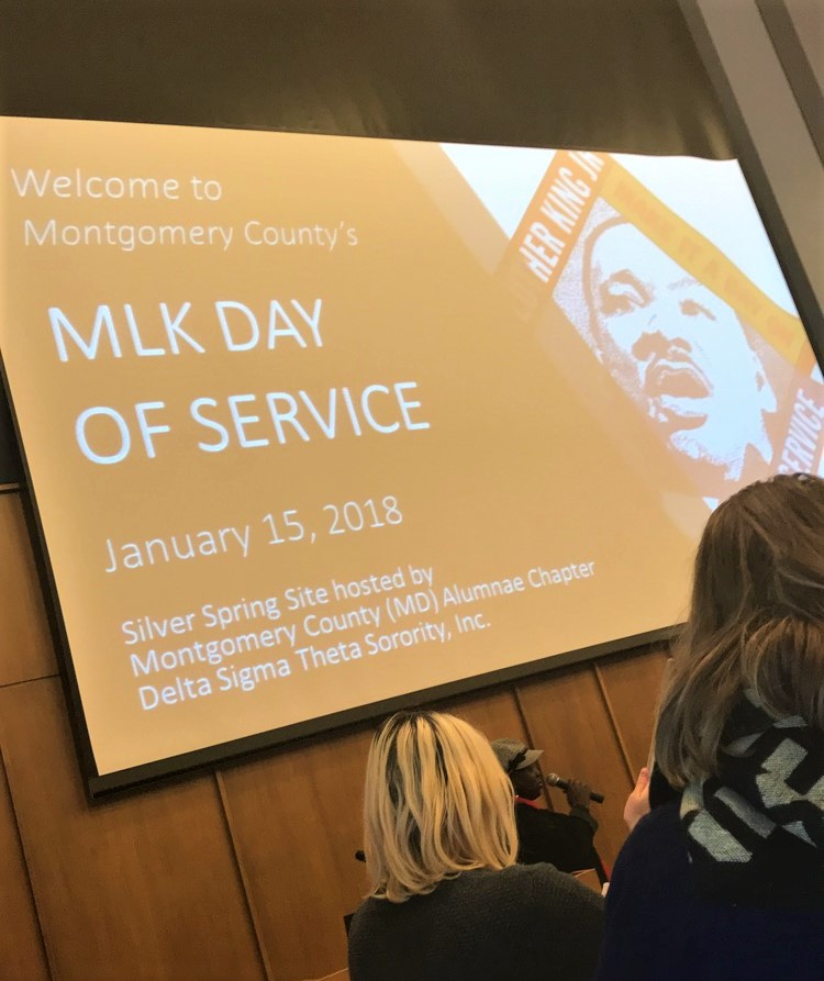12 mlk day of service.jpg