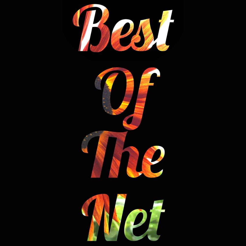 Best of the Net.jpeg