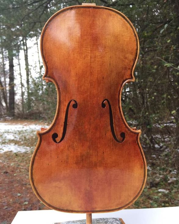 Michigan Violinmakers Association at the Great Lakes Woodworking Festival Peter Lynch.JPG