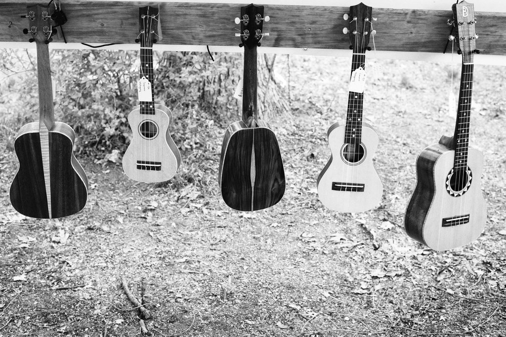 Dave Birney - Dave's Ukes at the Great Lakes Woodworking Festival