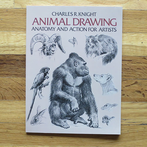 Animal Drawing: Anatomy and Action for Artists - Charles R. Knight