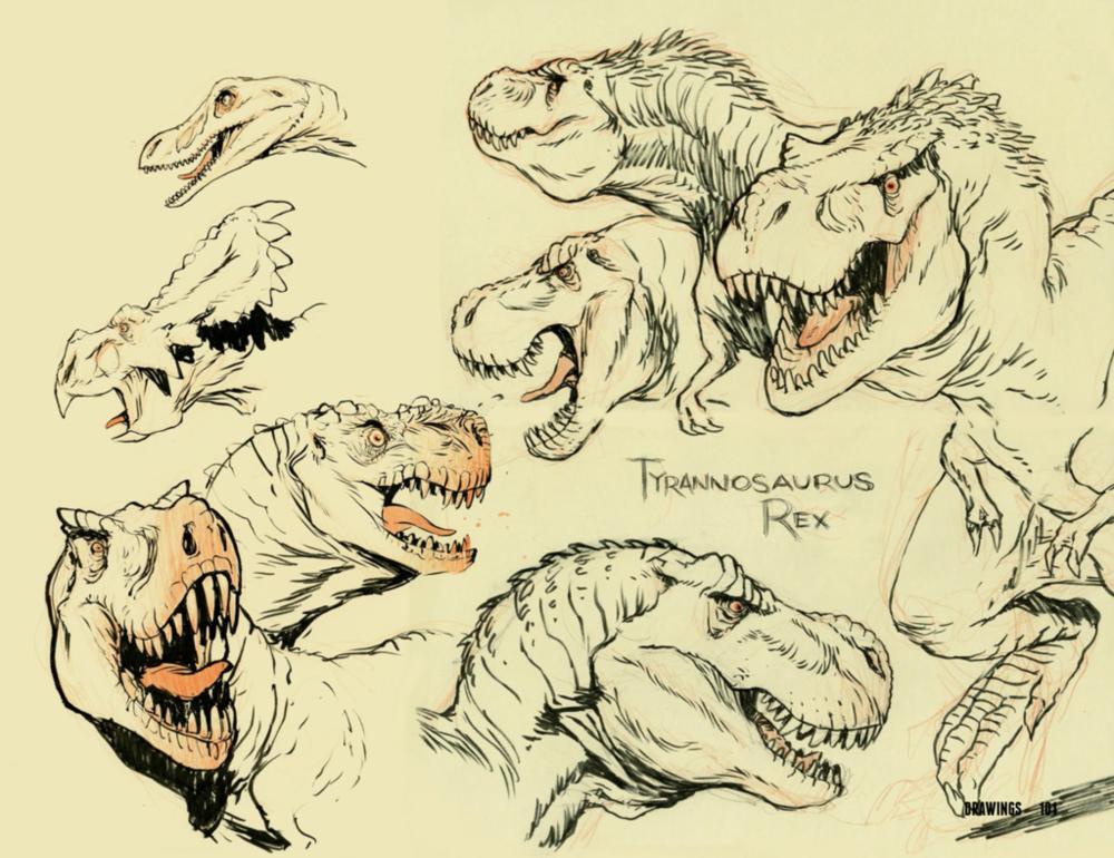 Drawing animal pdf the of art
