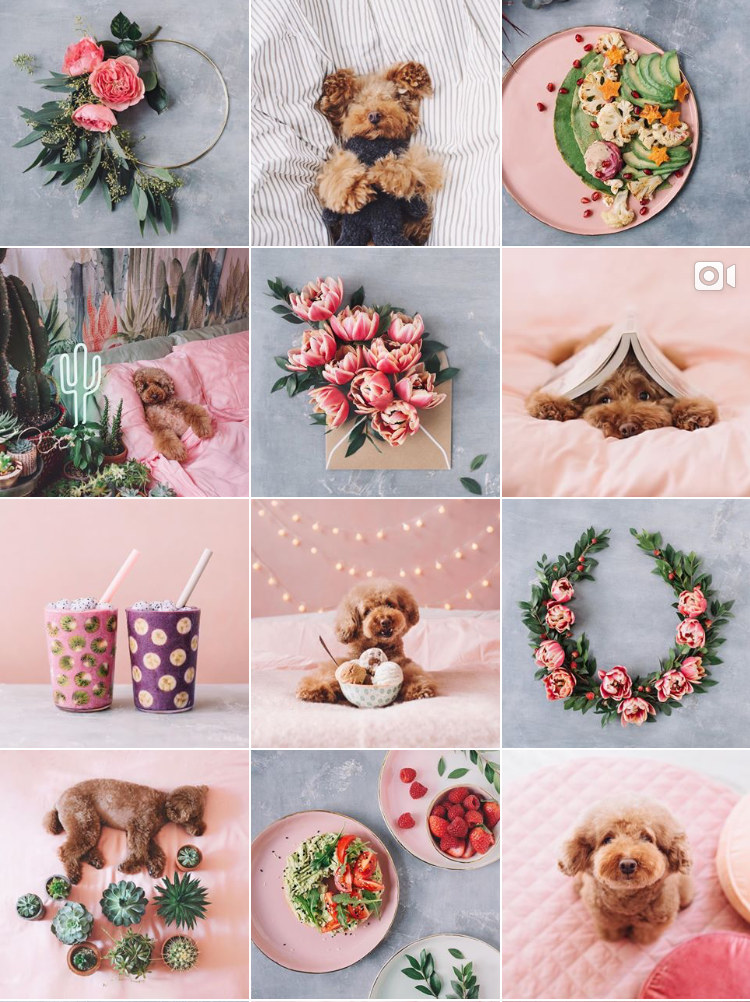 Some Instagram Inspirations To Fall In Love With - @ Ps.ny