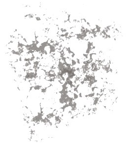 Lines - Copy.jpg