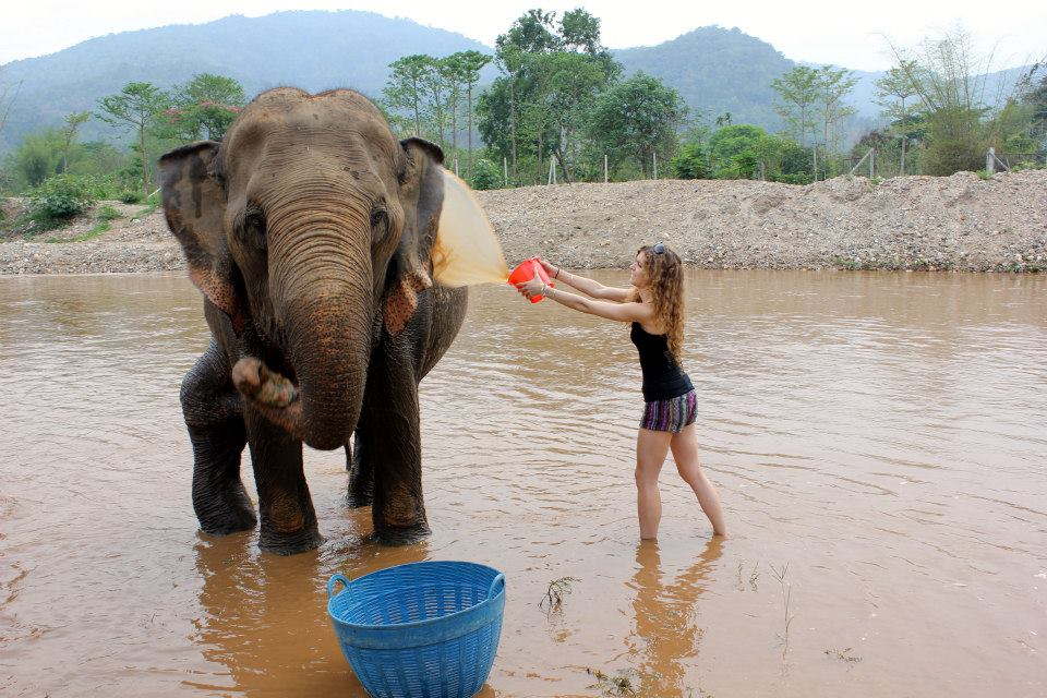 Me bathing Mae Do, one of Elephant Nature Park's residents.