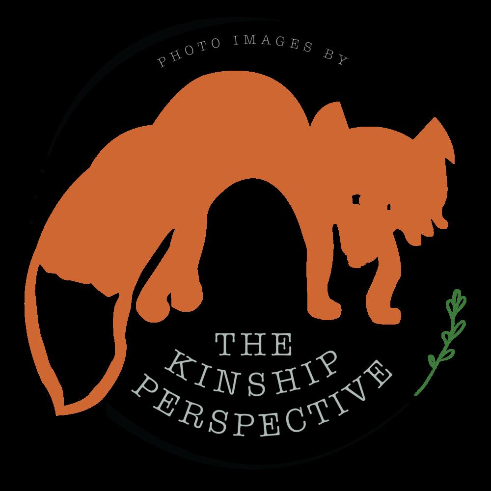 KinshipPerspective_LogoColor-01.png