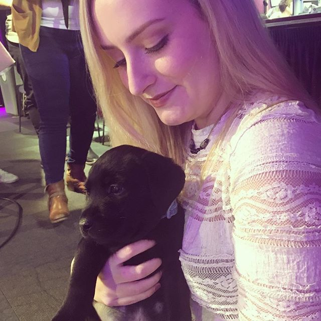 Puppy day at the BBC 💜