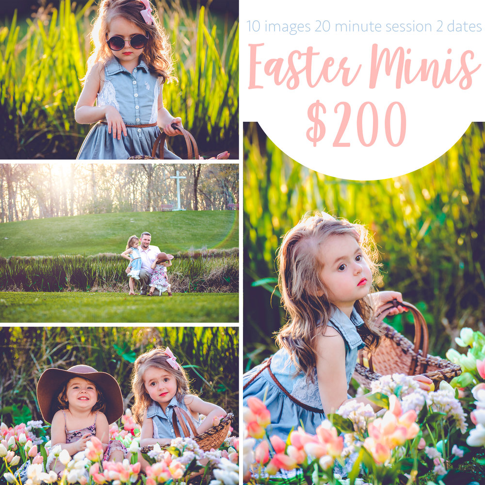 Promo Easter Minis.jpg