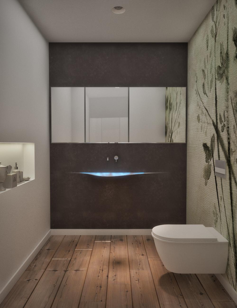 jpg guest toilet 01.jpg