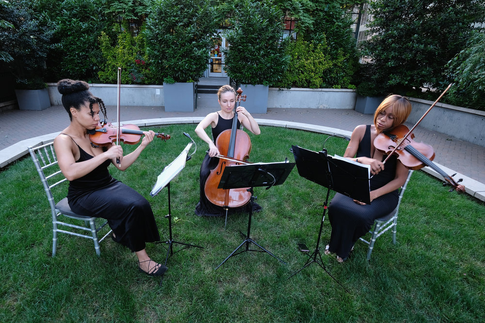 String Quartet.JPG