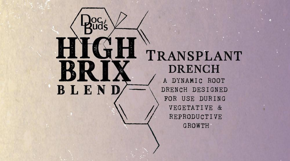 Web-Transplant-01-01.jpg