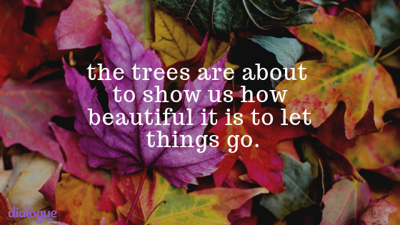 the trees are about to show us how beautiful it is to let things go..png