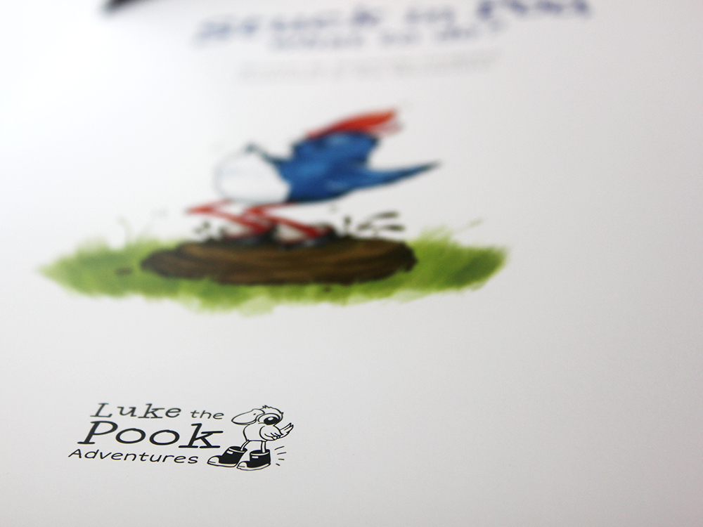 Luke the Pook Stuck in Poo What to do children's book Design Publication