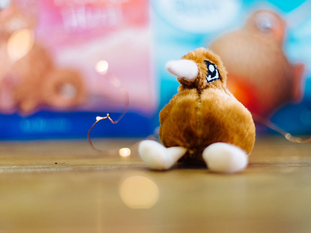 Kuwi the Kiwi Soft Toy Design Product