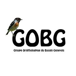 groupe-ornithologique-du-bassin-genevois