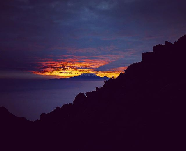 Up at the crack of dawn. Views on the mountain don't come better than this. #sunrise🌅 #crackofdawn #daybreak . . . www.threepeaksafrica.com . . . Morocco 2019: 20-29th July and 31st Aug - 9th Sept Tanzania 2019: 5th-21st Oct . . . . . 📷 @jaydike  #threepeaksafrica #dawn #sunrise #kilimanjaro #mtkilimanjaro #mountkilimanjaro #meru #africa #exploreafrica #hiking #hiking👣 #hikingtrails #hikingchallenge #hikingboots #mountain #mountain_world #mountaintop #challenges #challengeaccepted #adventure #adventureseeker #adventureaddicts #adventurers #explorers #exploremore #travel #traveller