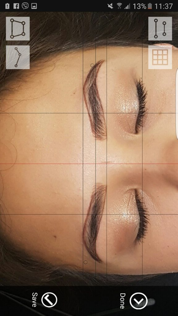 Phibrows Application