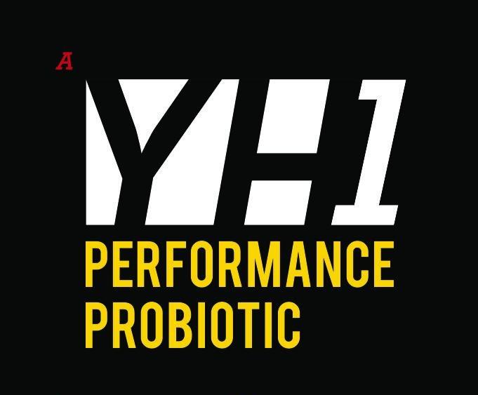 YH1_Shirts_logos.jpg
