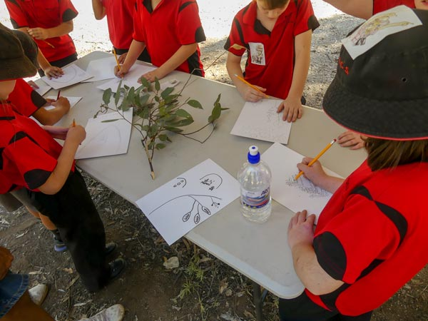 Photo: Students worked with Indigenous artist David Dunn on botanical art and learning about Indigenous culture.