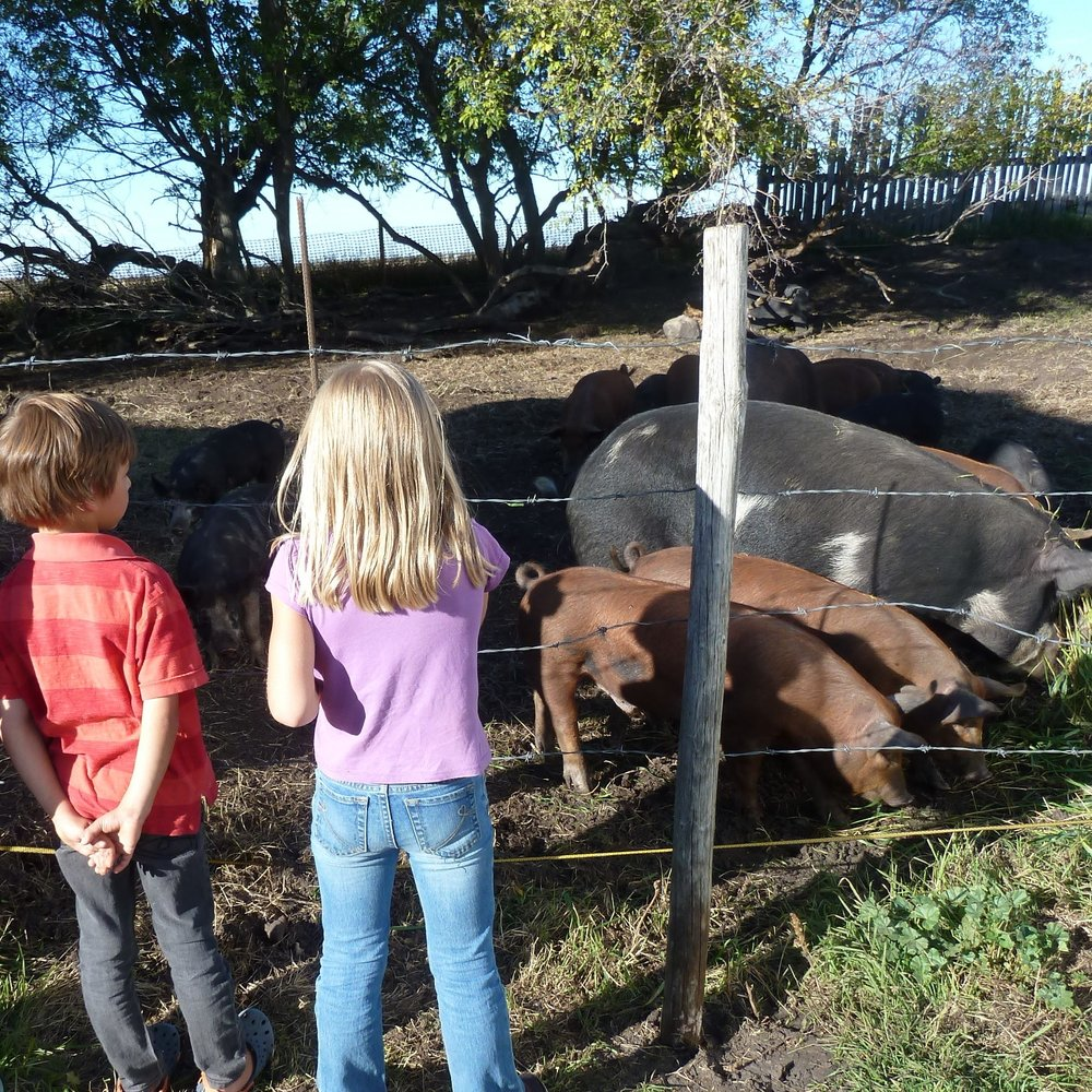 Bring your learning outsideto the farm - .