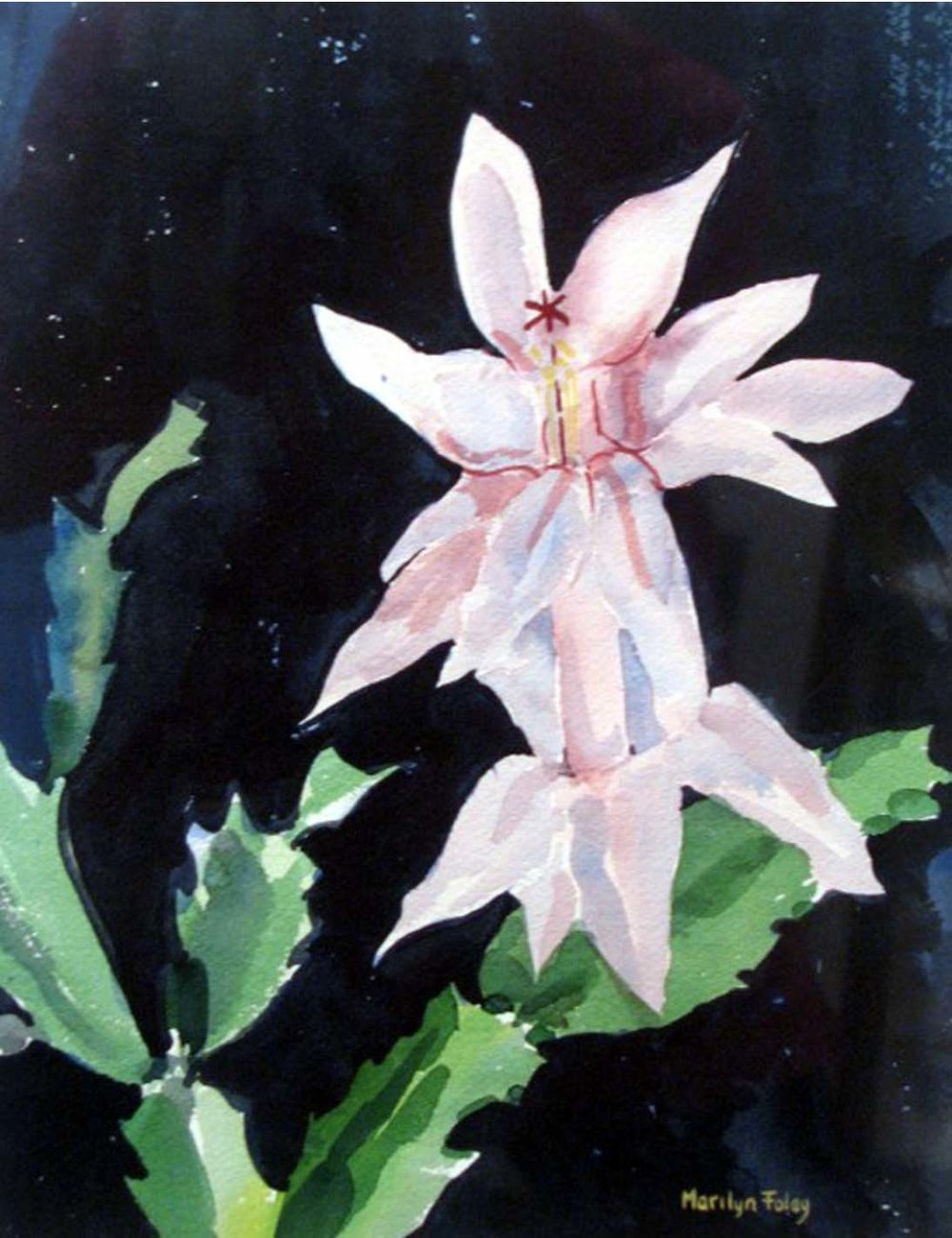 "Christmas Cactus   9"" x 12"", watercolor"