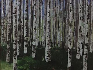 Birch Trees II   23 x 19, acrylic on canvas.