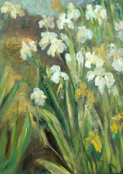 White Iris   30 x 22, oil on canvas