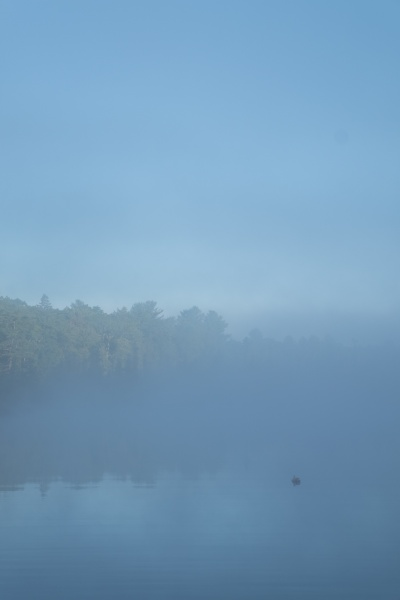 Dawn Watson, %22Lodge Lake Series 1.jpg