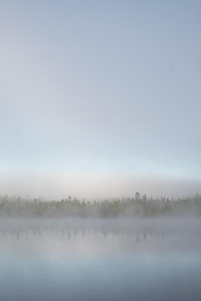 Dawn Watson, %22Lodge Lake Series 2.jpg